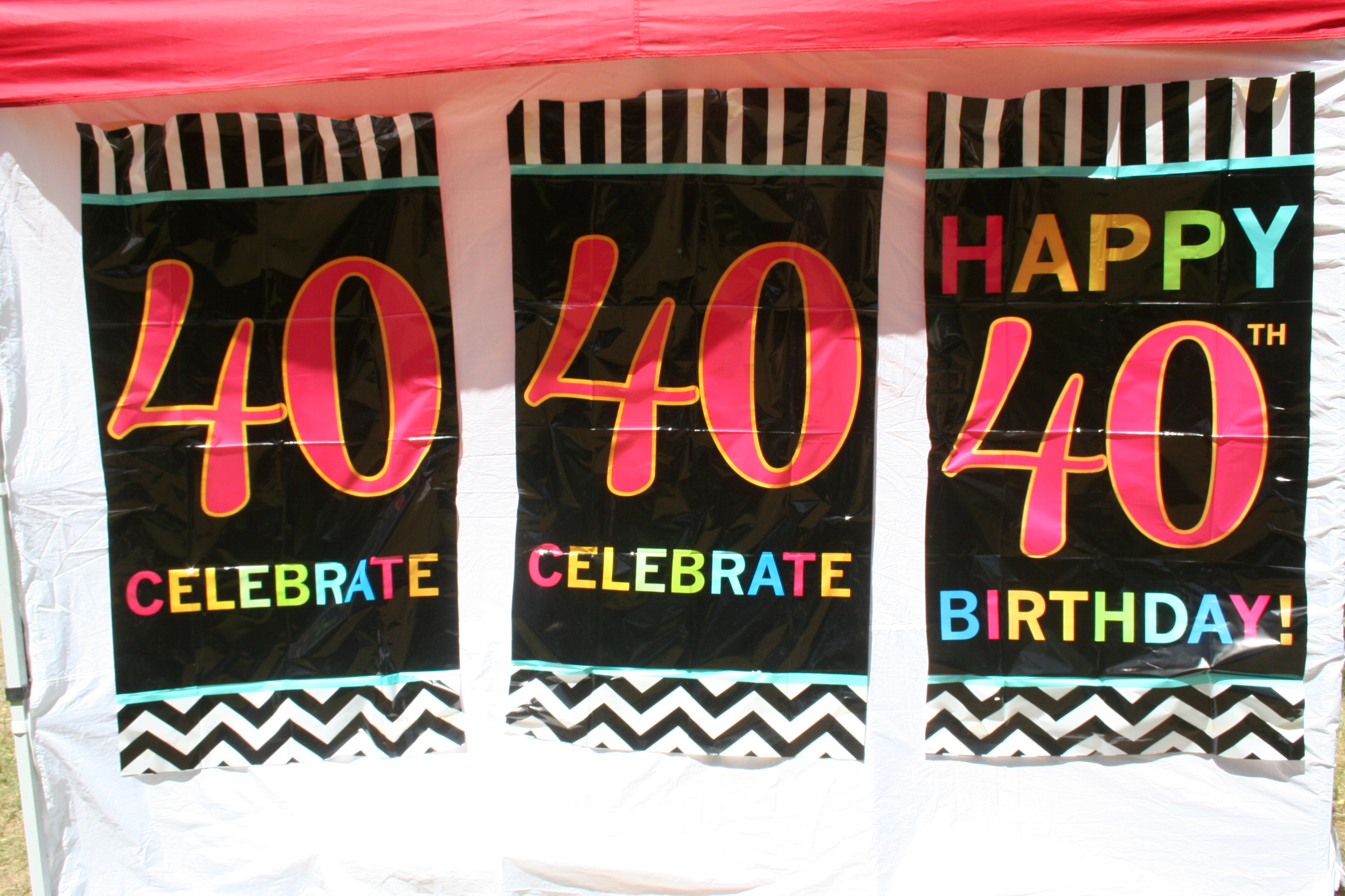 We Celebrated 40 Years of Changing Lives at This Year's Family Picnic!
