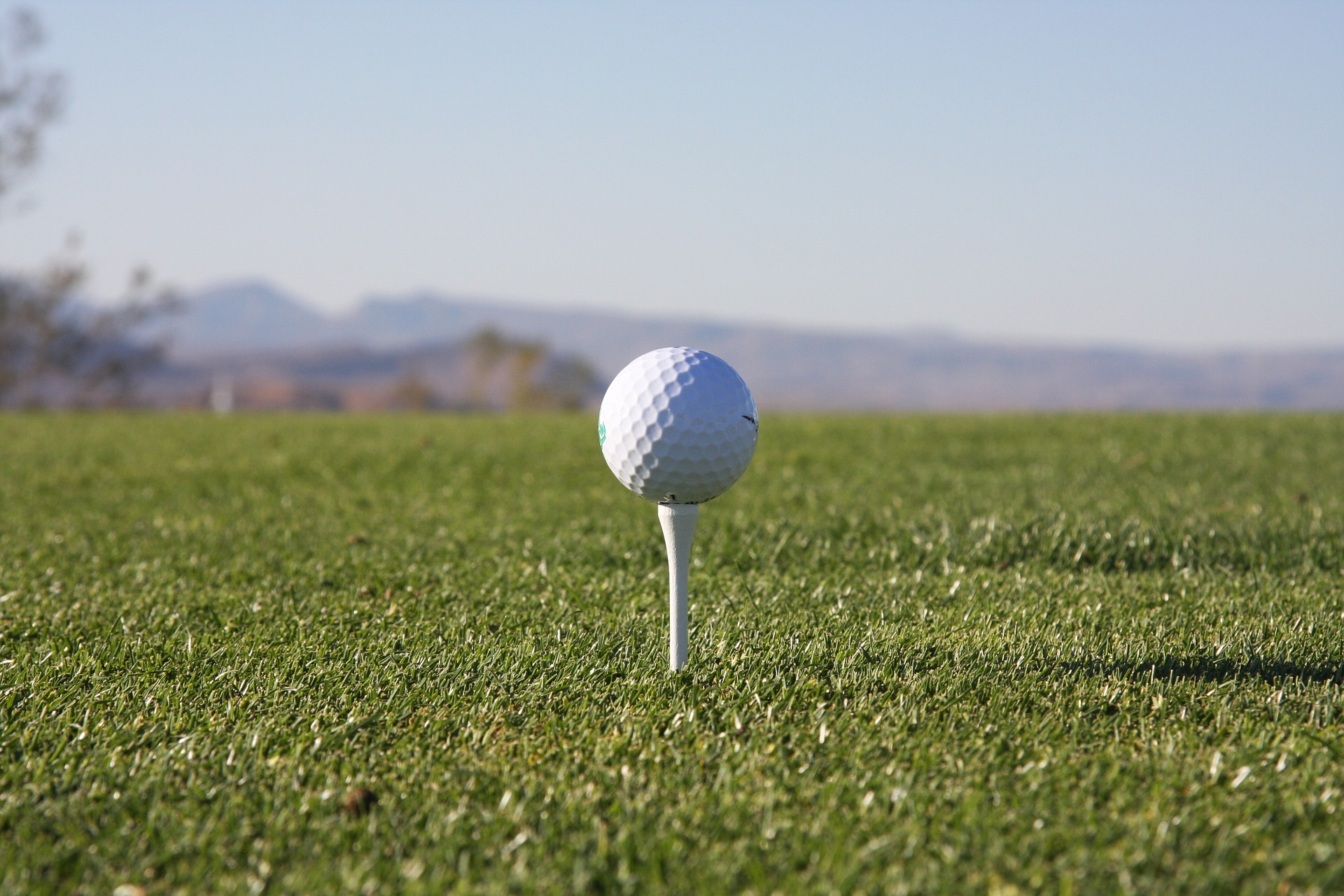 July 16: Summer Fun Day at Timbercreek Golf