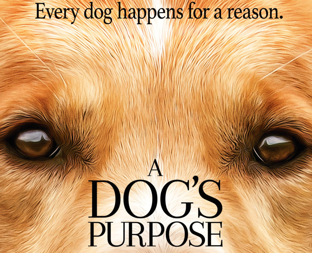 Jan 25: Movie Screening - A Dog