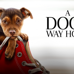 Jan 14: A Dog's Way Home – Movie Screening