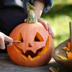 Oct 26: Halloween Pumpkin Carving