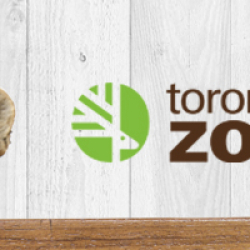 Aug 24: Visit to the Zoo – Exploration Day