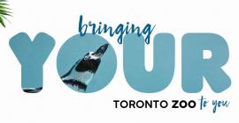 May 15: Toronto Zoo – Virtual Experience Program